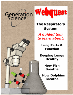 Respiratory system cover page