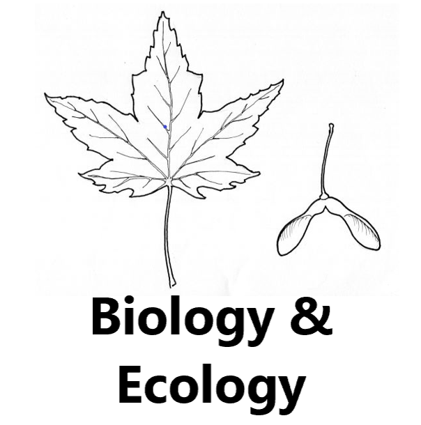 biology and ecology
